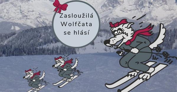 Zasloužilá wolfčata se hlásí